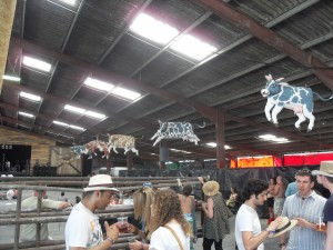 Lounge on the farm festival cow shed Right